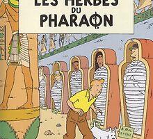LES HERBES DU PHARAON by Ivo Lundin Hatje