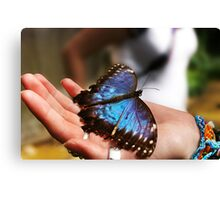 Vibrant Blue Butterfly Sitting On The Palm Of A Girls Hand Canvas Print