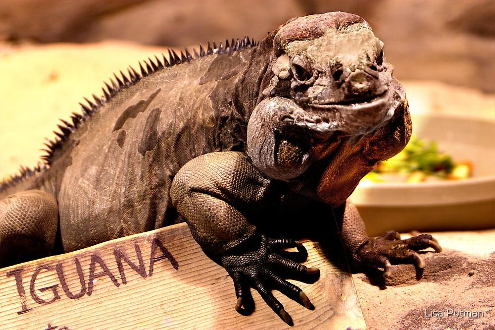 Iguana is my name by Lisa G. Putman