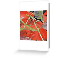 Chinese Lanterns After Frost Greeting Card