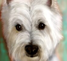 Westie by Deb Reynolds