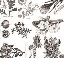 Vintage Botany Floral Print by ARTiculatePRINT
