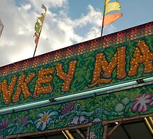 monkey maze by Roslyn Lunetta