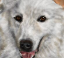 Great Pyrenees by Deb Reynolds