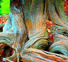 """Root of all Evil - """"Money Tree"""" by christiane"""