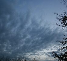 Clouds at night by Erin Flynn