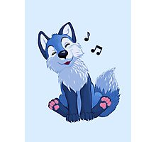 Blue singing, swinging foxy Photographic Print