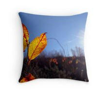 hazy days Throw Pillow