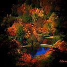 Fall Majesty 2.2 by Lisa Taylor