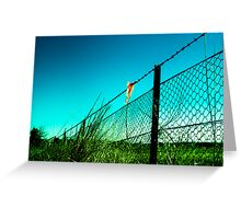 Fence 2 Greeting Card