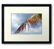 Playa Mia Framed Print