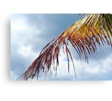 Playa Mia Canvas Print