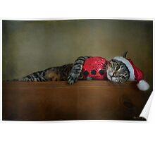 Santa Claws Poster
