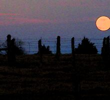 Country Moon by daniellelouise