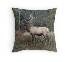 BULL ELK POSER Throw Pillow