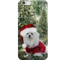 Snowdrop the Maltese - Counting the Days ! iPhone Case/Skin