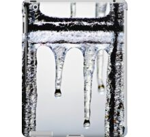 Hang in there~ iPad Case/Skin