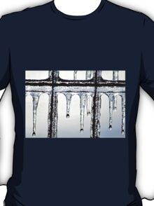Hang in there~ T-Shirt