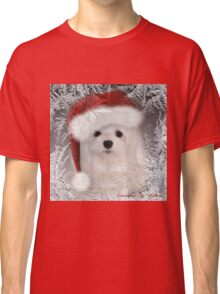 Snowdrop the Maltese - A Frosty Morning ! Classic T-Shirt
