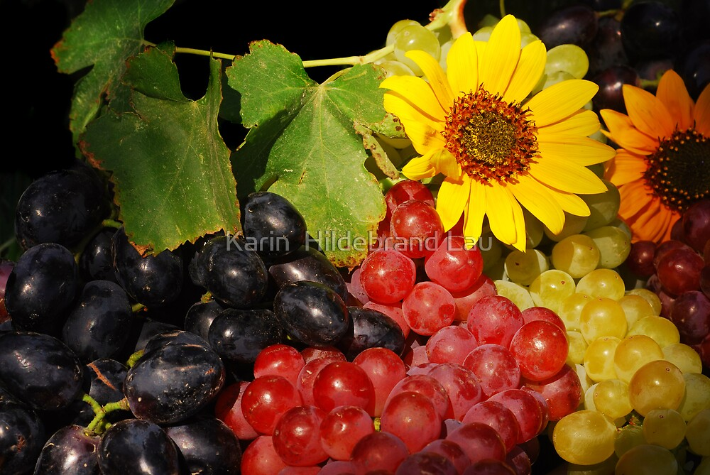 Afternoon Grapes by Karin  Hildebrand Lau