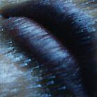metallic lip gloss by ShaneMartin