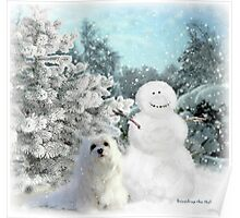 Snowdrop the Maltese & The Snowman Poster
