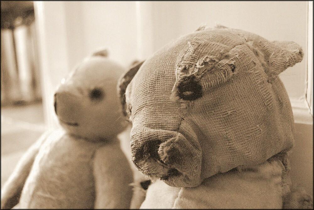 Ted, Bedraggled by Elizabeth Freundel