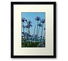 Pacific Flowers Framed Print