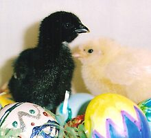 MORE EASTER CHICKS by rue2