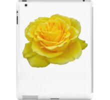 Beautiful Yellow Rose Closeup Isolated On White iPad Case/Skin