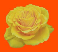 Beautiful Yellow Rose Closeup Isolated On White Kids Clothes