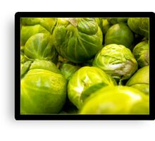 Sprouts Canvas Print