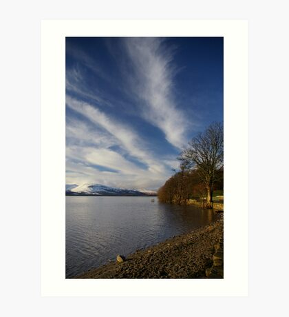 From the Park Shore Art Print