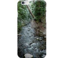The High Country iPhone Case/Skin