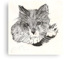 Indian Ink Cat Canvas Print