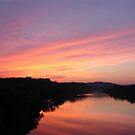 Sunset on Town Lake by Cathy Jones