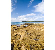 Murrays Beach Photographic Print