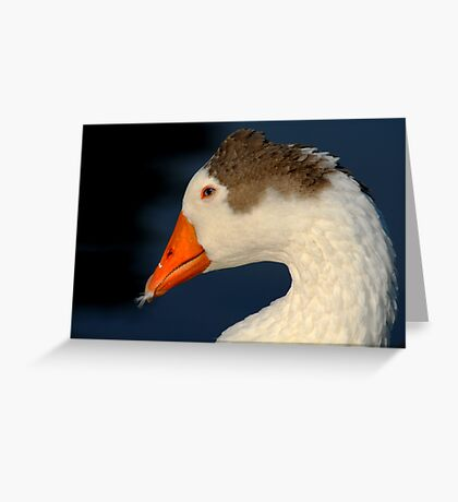 Goose with Feather in its Bill Greeting Card