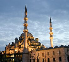The New Mosque (Yeni Camii), Istanbul, Turkey by onfilm