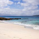Jervis Bay by Rosina  Lamberti