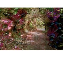 Leaving Secret Garden Photographic Print