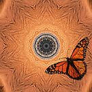 Scalloped Wings by Pat Moore