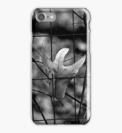A Place to Spend the Winter iPhone Case/Skin