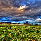 Spring Clouds by Deri Dority