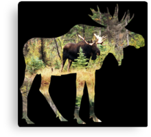 Moose in silhouette Canvas Print