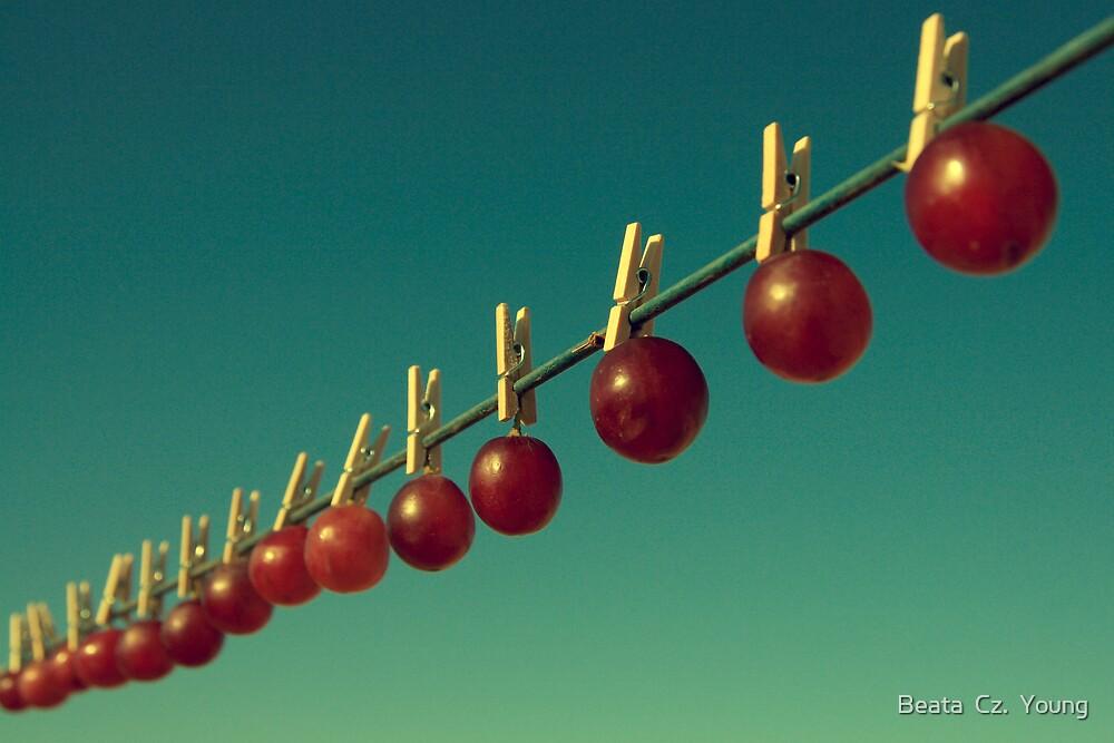 Making raisins by Beata  Czyzowska Young
