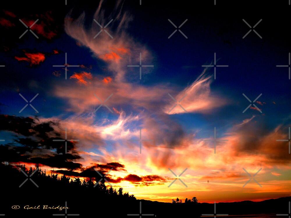 A Brilliant Sunset by Gail Bridger