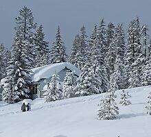 Winter Wonder Land by Sharoncr