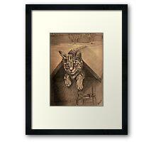 Kitty Mail Framed Print