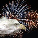 Eagle Explosion by Judson Joyce